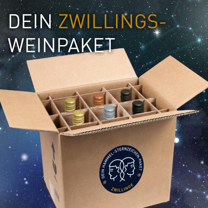 Sternzeichenpaket - Zwilling